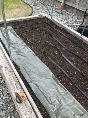 Low tunnel raised bed